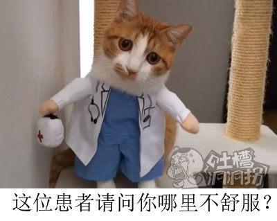 这位患者请问你有哪里不舒服?