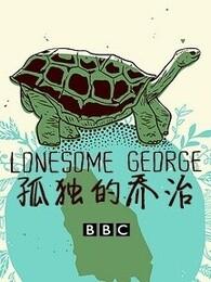 孤独的乔治