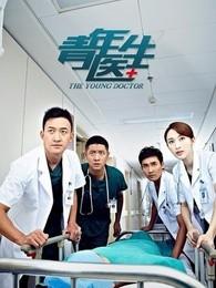 青年医生DVD版