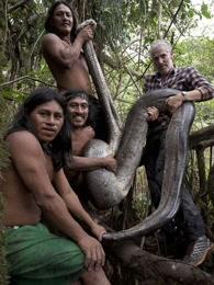 部落 动物和我