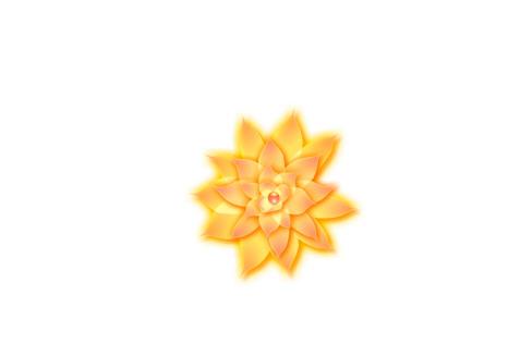 Flash教你怎样制作花瓣随风舞动